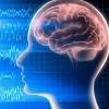 Медитация и психоделический наркотик оказывают на мозг схожие эффекты