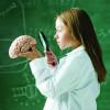 Сенситивный период для развития памяти